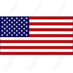 """""""Китайская Америка"""" из 100% полиэстера"""