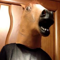 Маска лошади - символ уходящего года